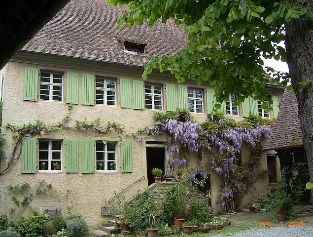 Old Mill near vineyards & woods - Ballrechten-Dottingen - Outros