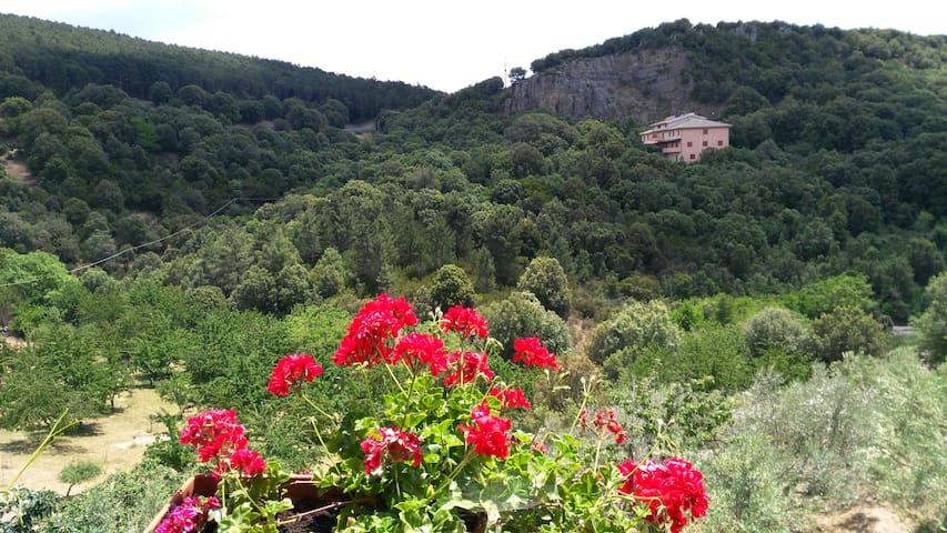 La Peonia, casa romantica in montagna-Sardegna