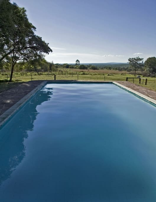 Our 15m heated pool - just outside your door!