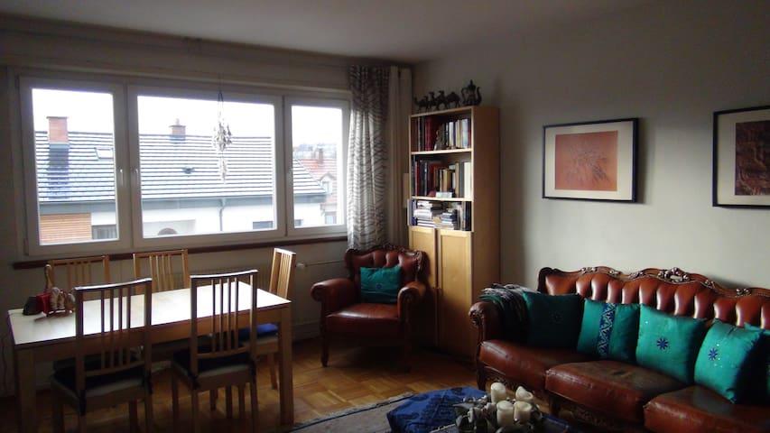 Bright, Sunny and Cozy Apartment - Estrasburgo - Condomínio