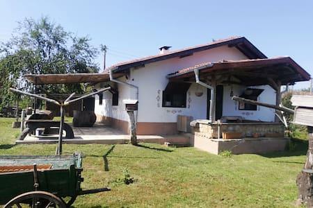 Paradise house,Izgrev,Sliven has 6 beds in total