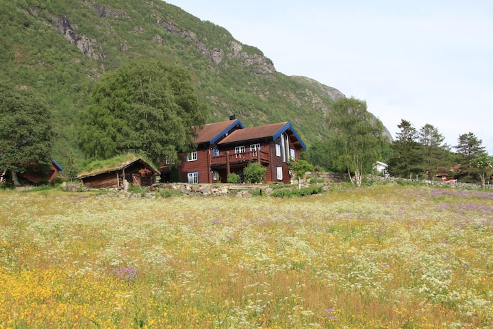 Apartment in Grungedal Valley, near Haukelifjell