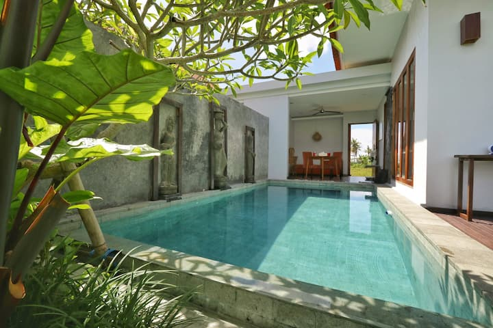 Ubud Scenic Breezy Rice field villa private pool