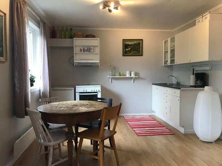 Apartment Bulken, Voss