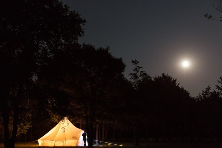 Magical Bell Tent