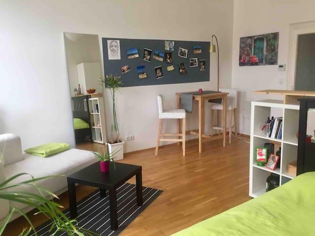 Helle Wohnung beim hippen Yppenplatz