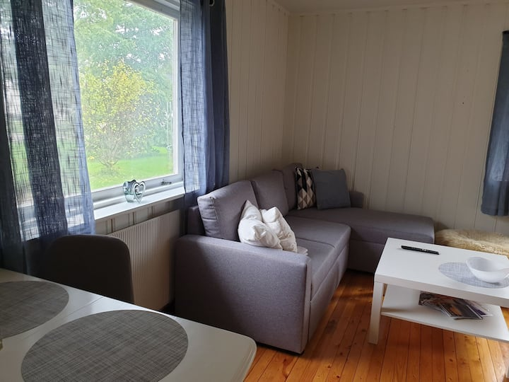 Koselig leilighet i rolig område i sentrum