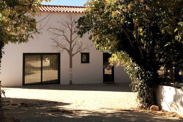 Horta dos Cedros - Casa da Árvore