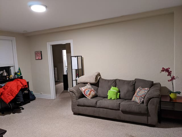 Spacious one-bedroom 2 blocks from Central Campus