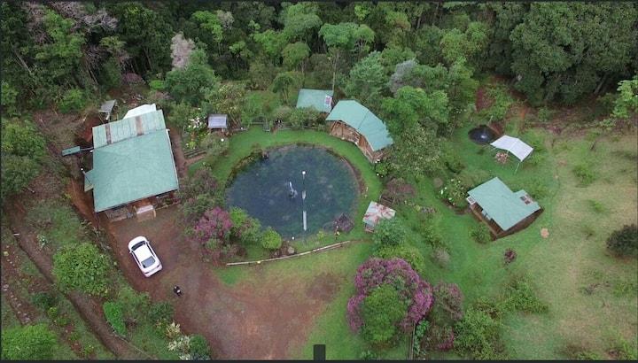 Las Cataratas Lodge (San Gerardo de Dota)
