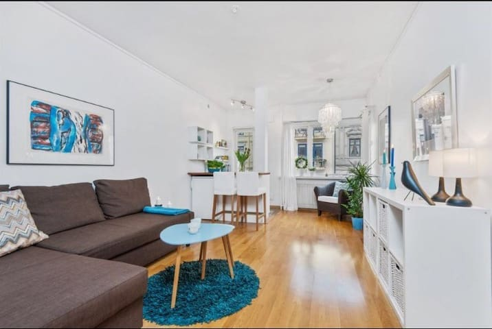 Beautiful studio apt. in the heart of Oslo! - Oslo - Lägenhet