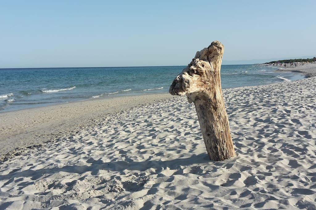 Spiaggia di Berchida (20 min auto) Berchida beach (20 minutes by car)