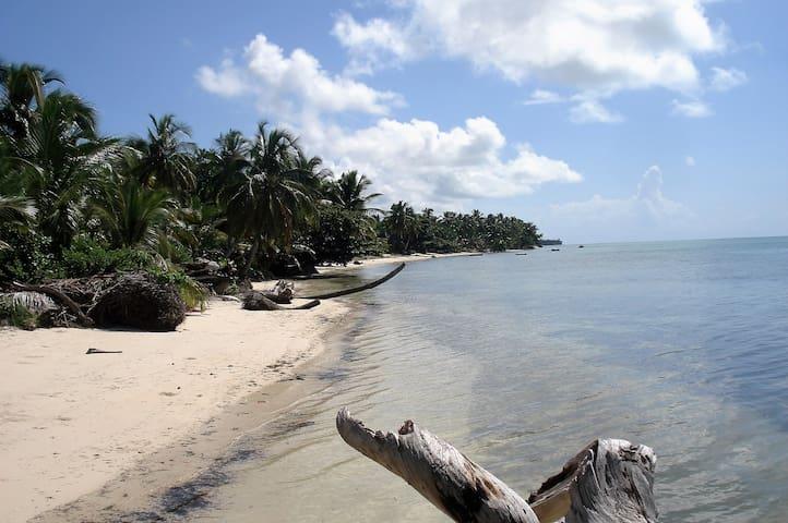 La plage devant la maison