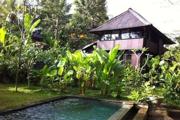 Umah Kunang Kunang - ubud - Ház