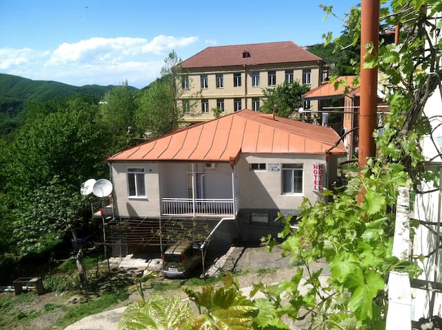 Guest House Elegance - Sighnaghi - Apartment