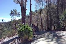 Exteriores Cabaña, vistas a la sierra