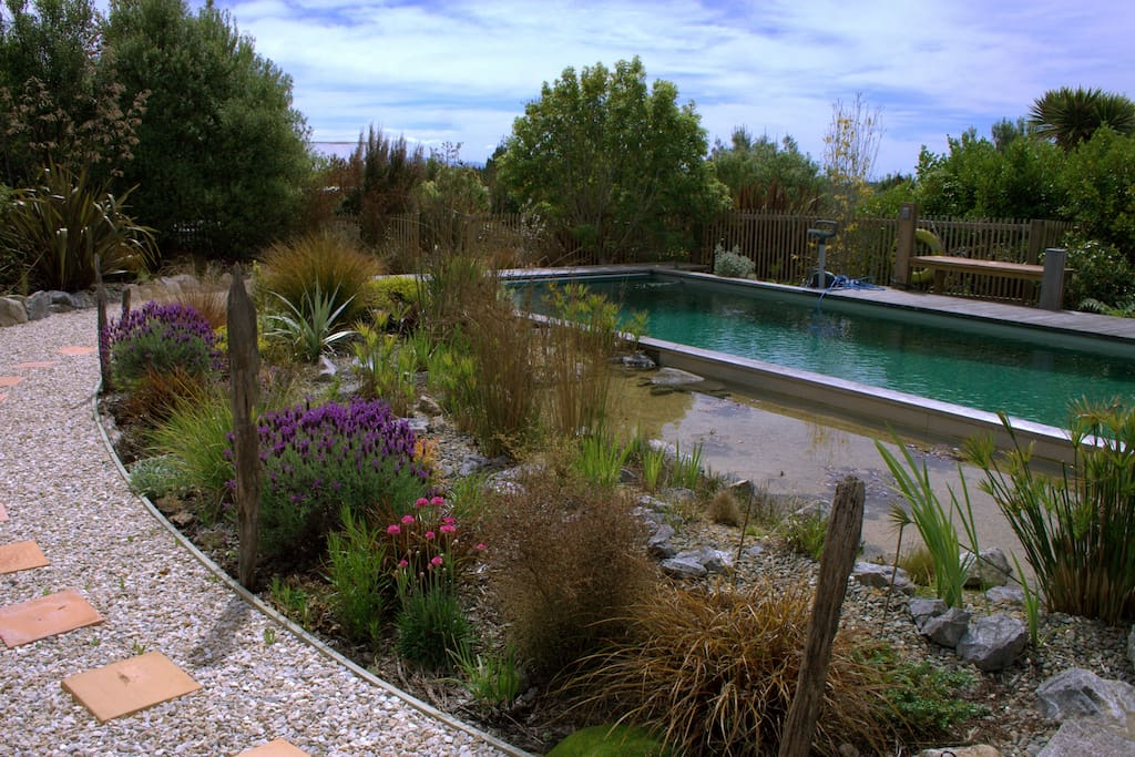 surrounding garden with a wide variety of Mediterranean and NZ native plants