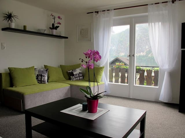 Family Apartment on Lake Hallstatt - Bad Goisern am Hallstättersee - Appartement