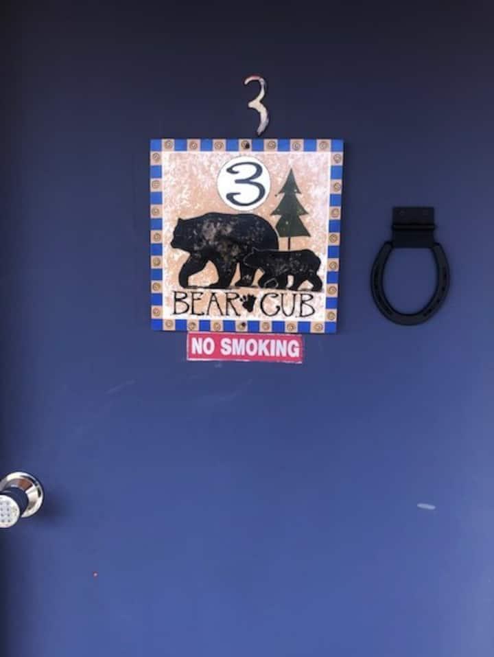 Black Bear: Room 3 Bear Cub Room