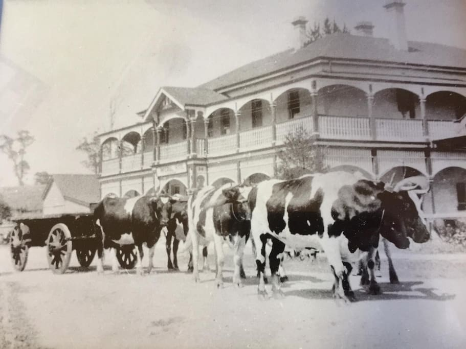 Imperial Hotel early 1900's
