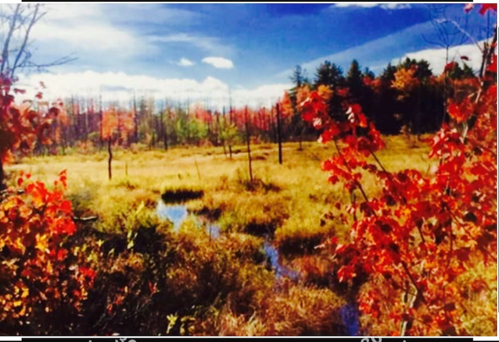 September and October  is breathtaking with fall colors