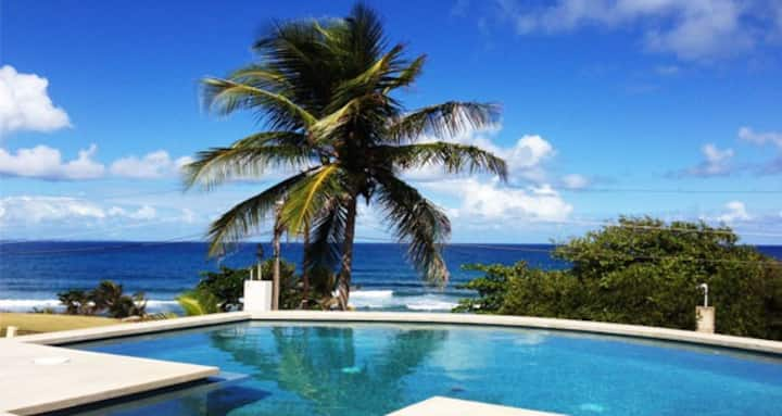 Surf Side, Private Salt Water Pool, Ocean View