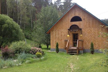 Дом в горах - единение с природой - House