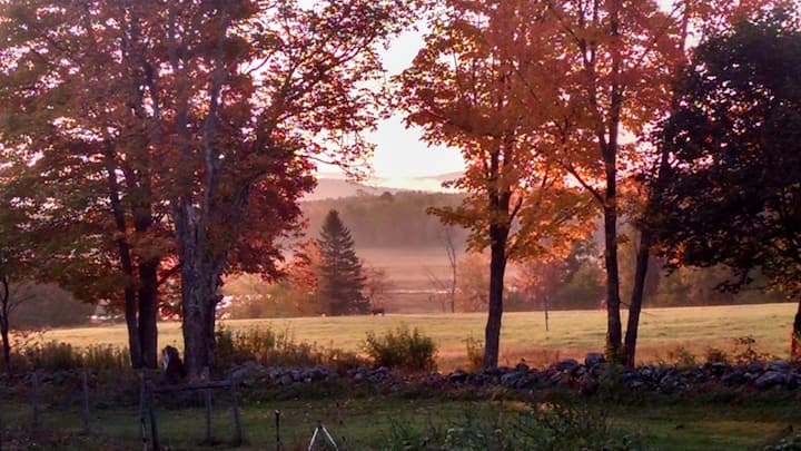 Leaf peepers paradise in old Farmhouse