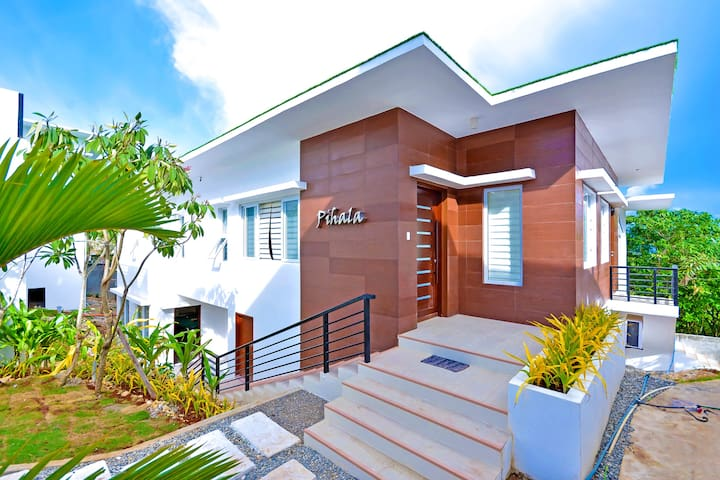 Villa Pihala Facade