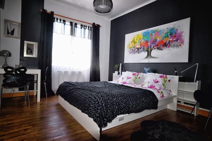 Grande chambre N&B de 26m² à 10 mns de la Cité - Carcassonne - Haus