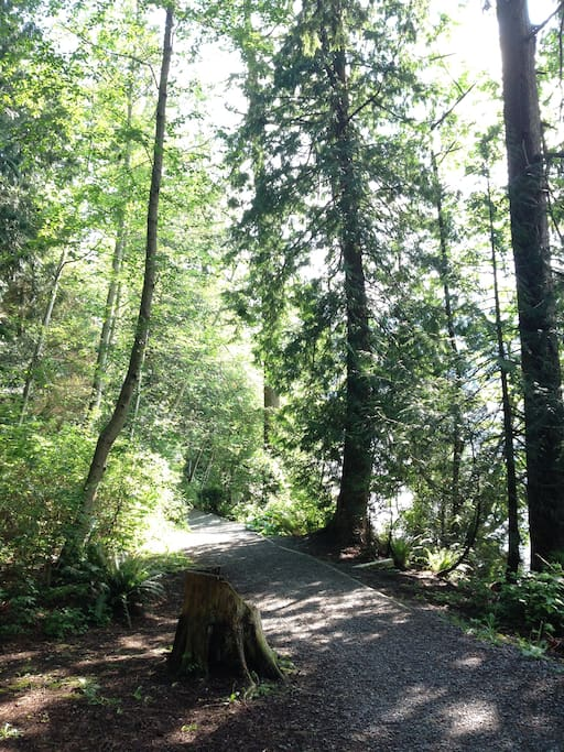 Forest Trails everywhere... some for hiking and running, some for cycling / mountain bike trails too
