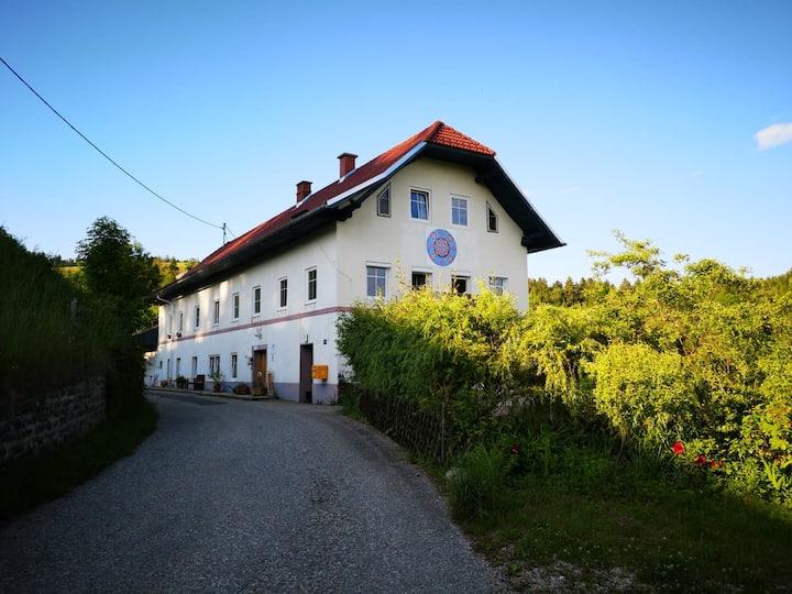 Haus der Begegnung - Zentrum Quintessenz -Kärnten