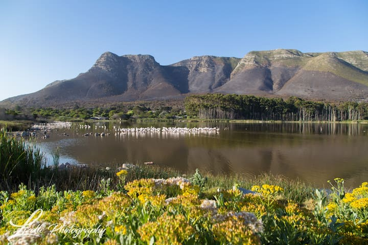 Spacious Holiday Condo in Vermont, Hermanus - Vermont - Selveierleilighet
