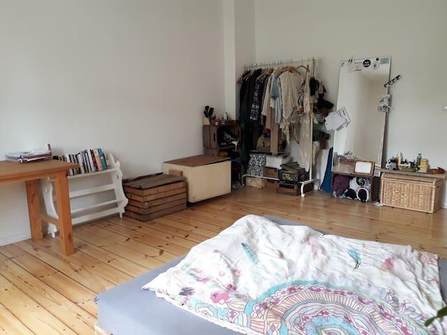 Cosy room in shared Flat in Prenzlauer Berg