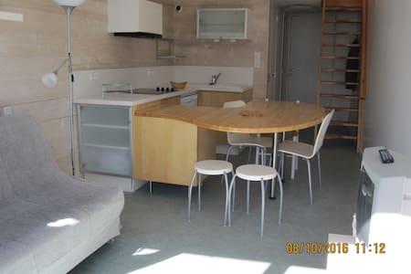duplex 4 pers entièrement rénové - Orcières - Apartament