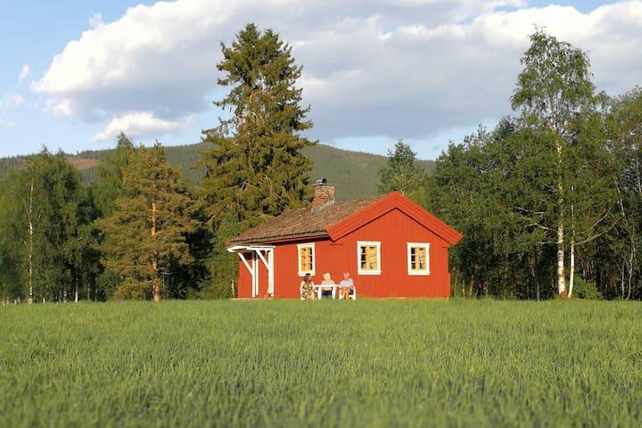 Blinkerstue hytten i kveldssol