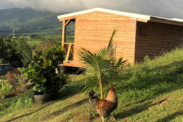 Ti Case soleil : bungalow au Carbet