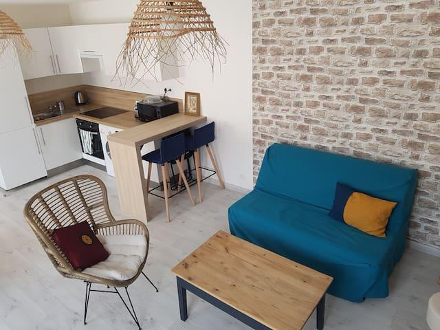 Caudebec-T2 moderne/ lumineux 40 m2 Wifi+ Netflix