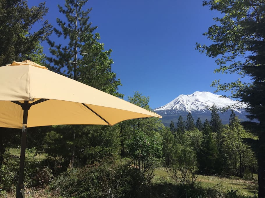 Panoramic View of Mt Shasta from Terrace