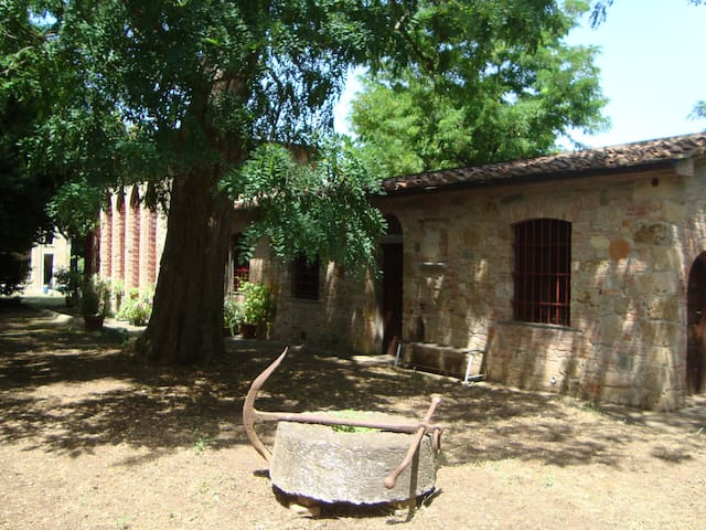 """La Limonaia"" flat in historic villa on the hills"