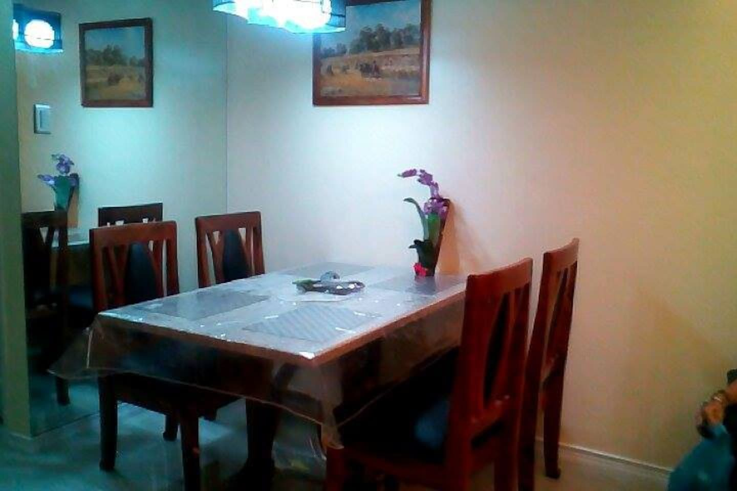 Brand new dining room Marble table