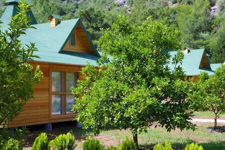 Arcadia Villas Chimera - Çıralı - Домик на дереве