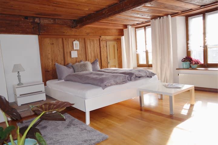 Appartement in Interlaken ( Unterseen )