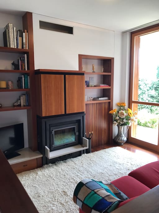 Potrai rilassarti davanti al caminetto, leggere un buon libro, e goderti la nostra meravigliosa vista sulle colline friulane :)