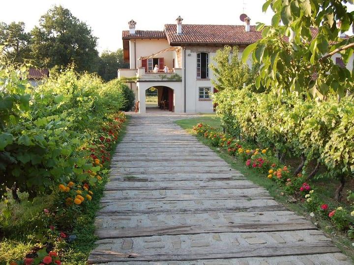Cascina Mimia - farmhouse in Piemonte Monferrato