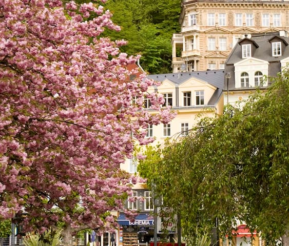 KARLOVY VARY - Apartment in the SPA center