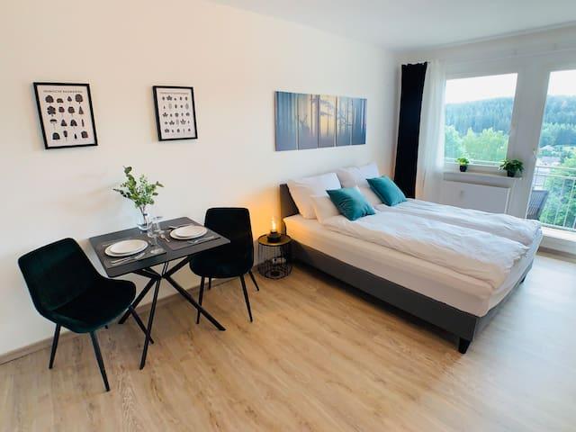 Gemütliches Apartment in Bad Elster mit Netflix