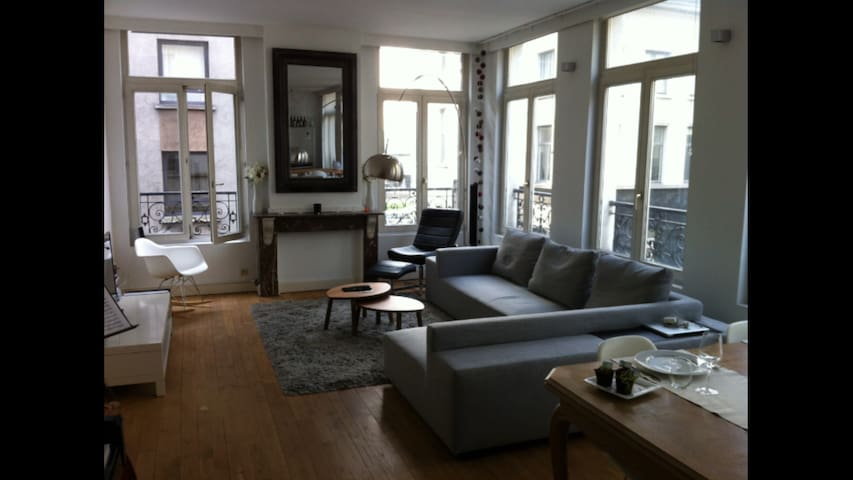 Bright apartment in historic city centre - Antwerpen - Condo