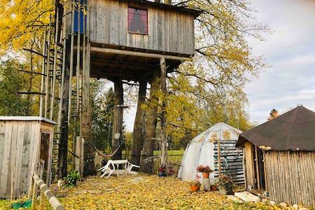Treehouse Magpies Nest Skatboet.