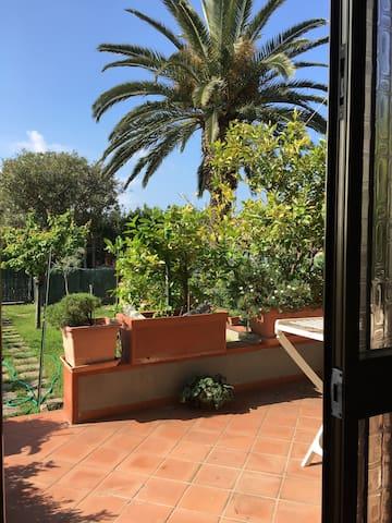 Ampio bilocale con terrazzo - Castiglione della Pescaia - Pis